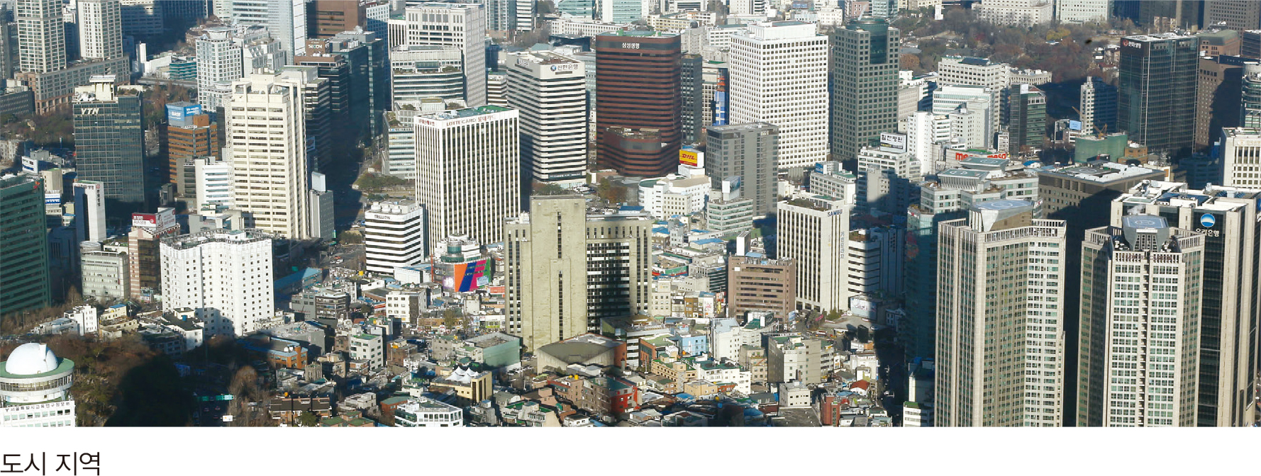 도시 지역