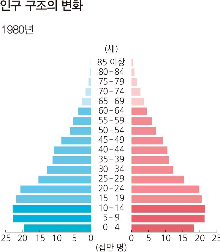 인구 구조의 변화 1980년