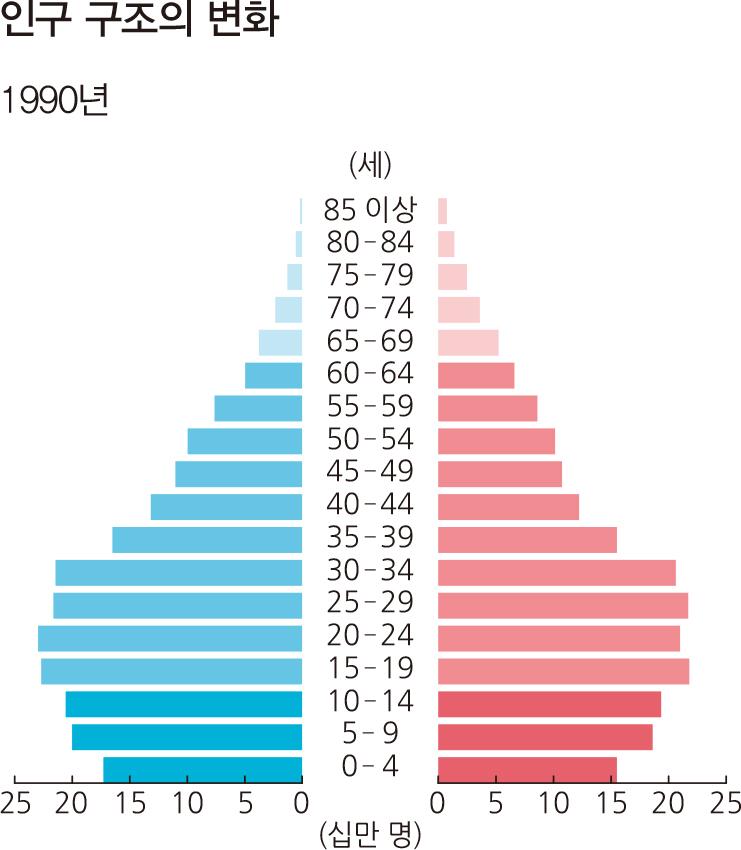 인구 구조의 변화 1990년