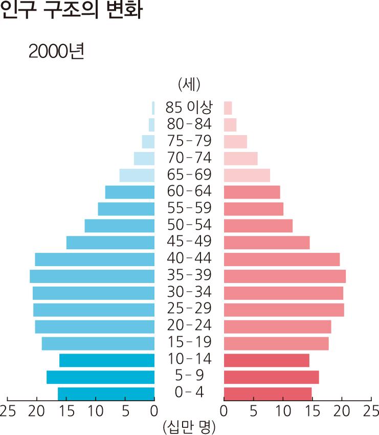 인구 구조의 변화 2000년