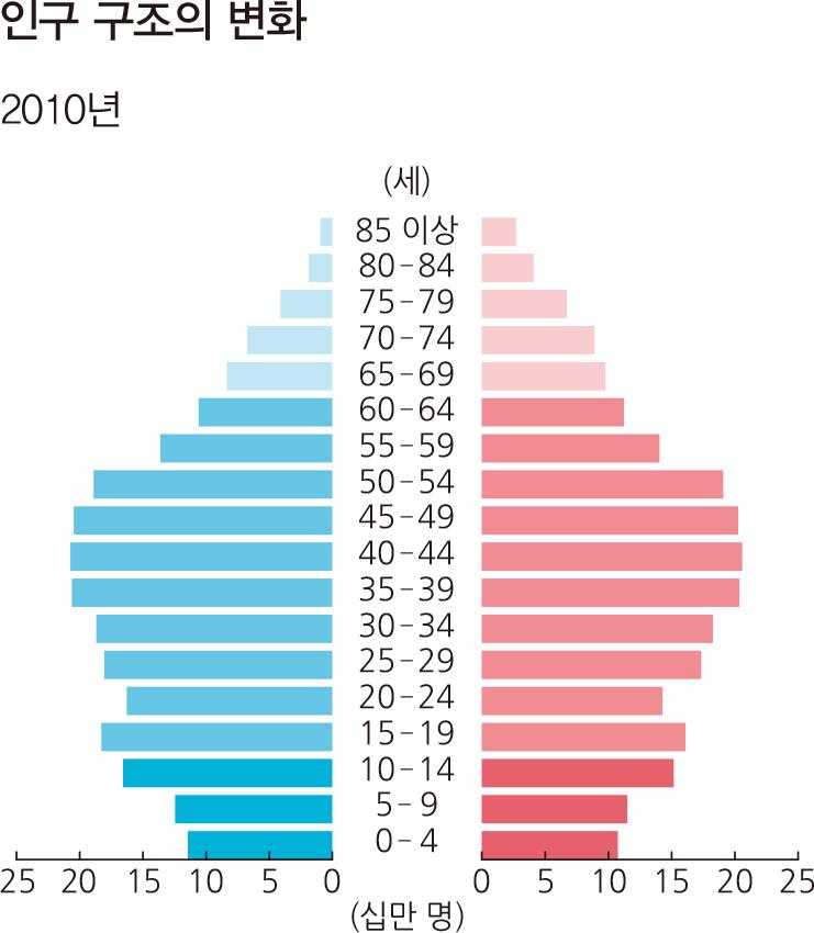 인구 구조의 변화 2010년