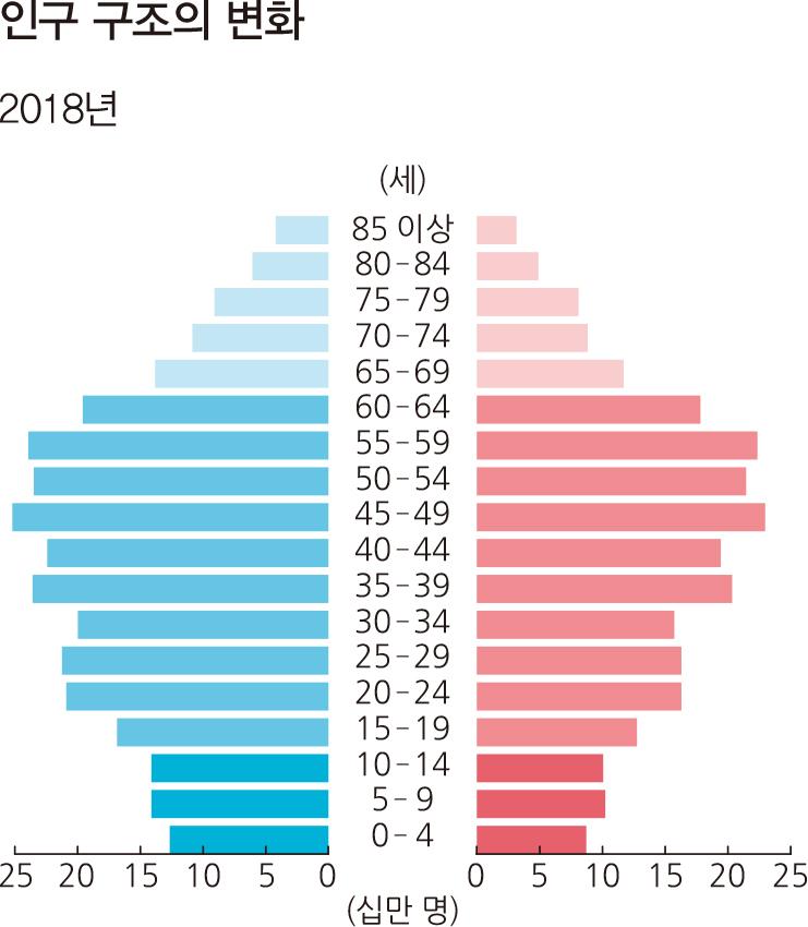 인구 구조의 변화 2018년