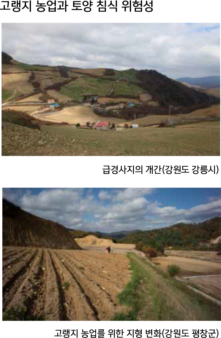 고랭지 농업과 토양 침식 위험성