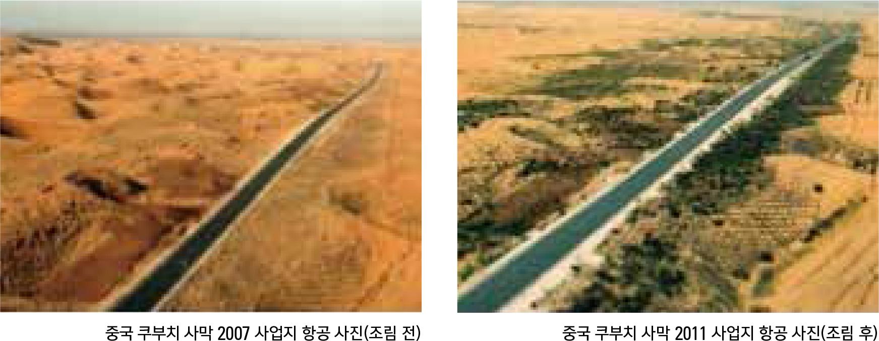 중국사막화방지조림사업지원