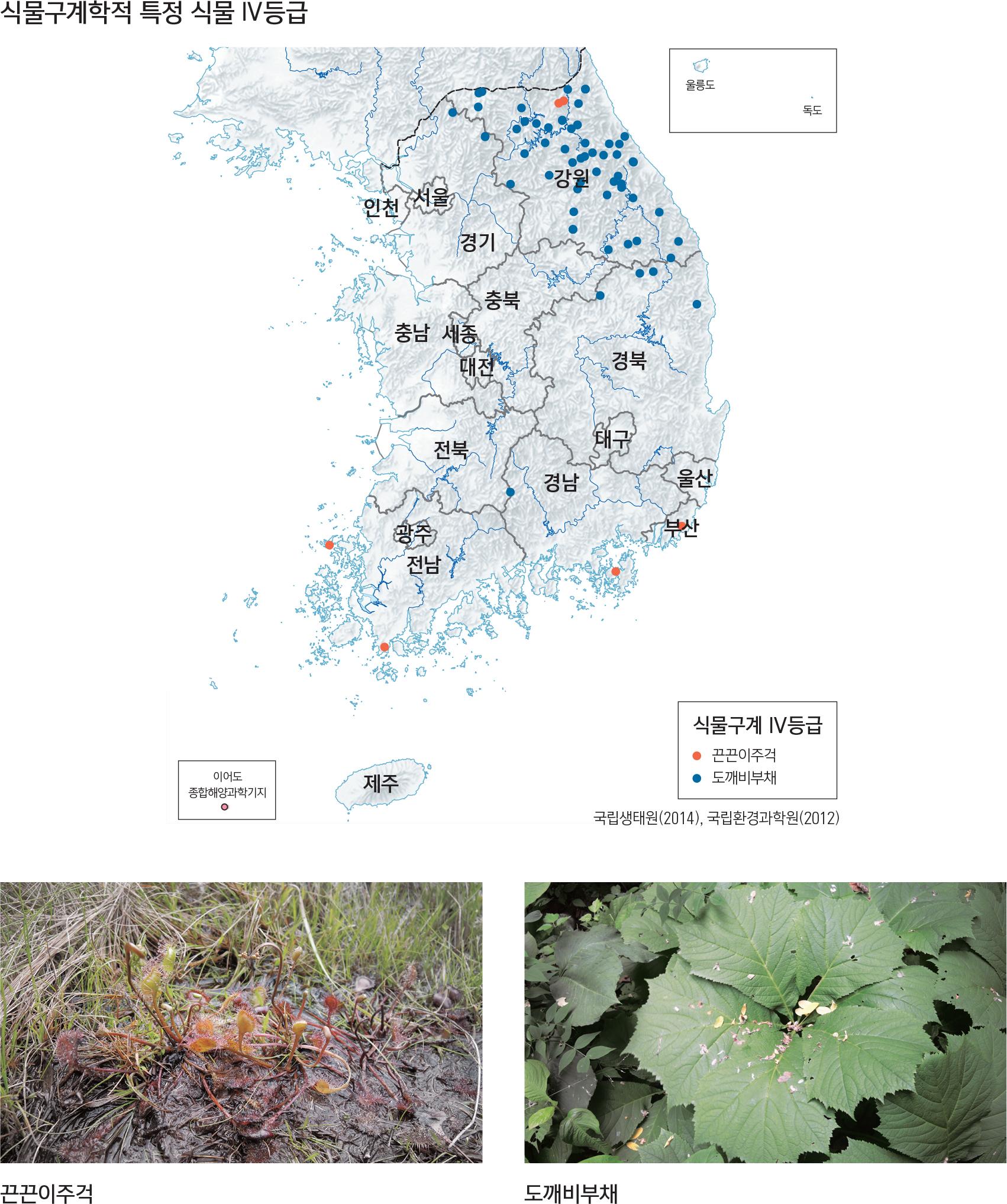 식물구계학적 특정 식물 IV등급