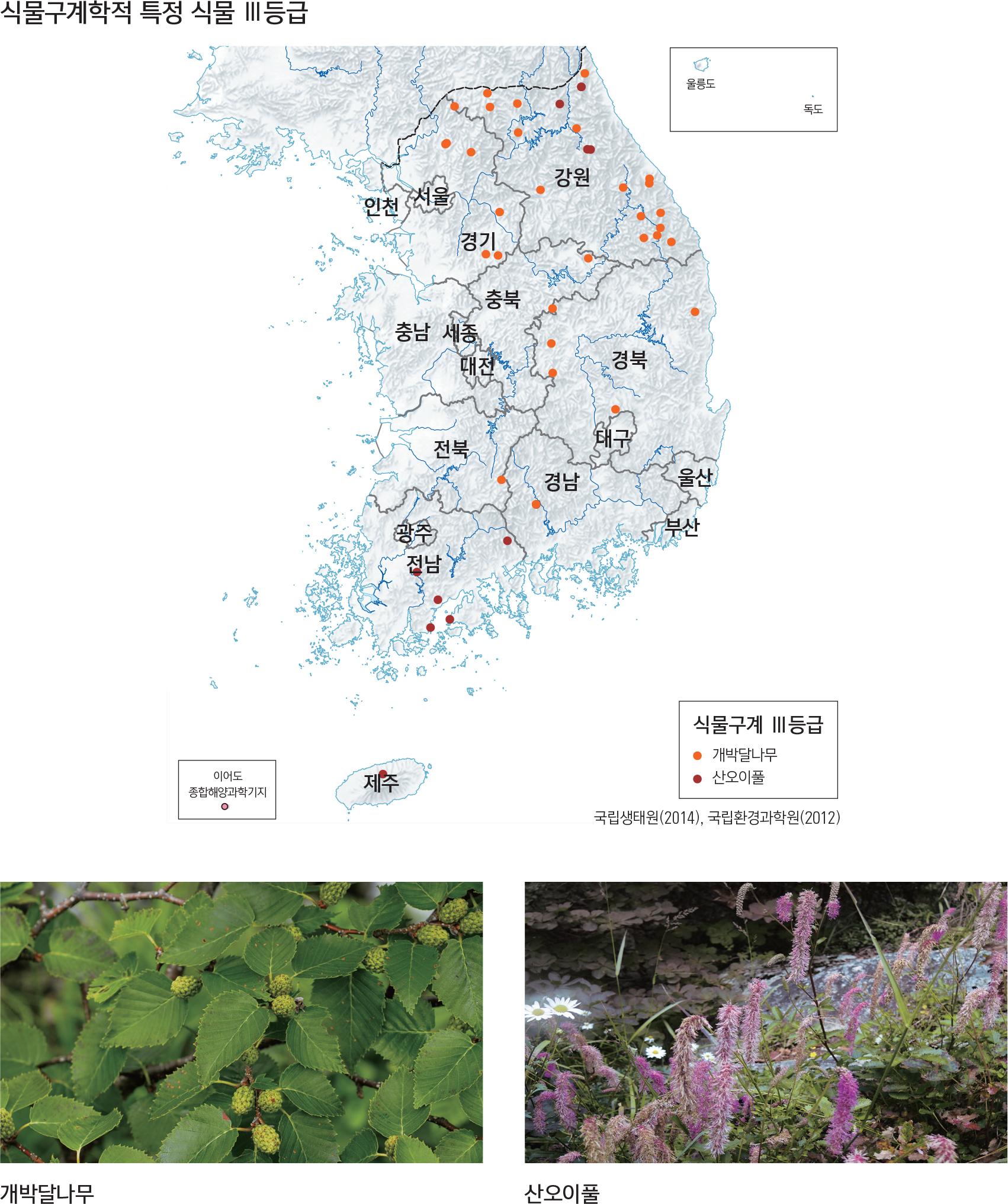 식물구계학적 특정 식물 III등급
