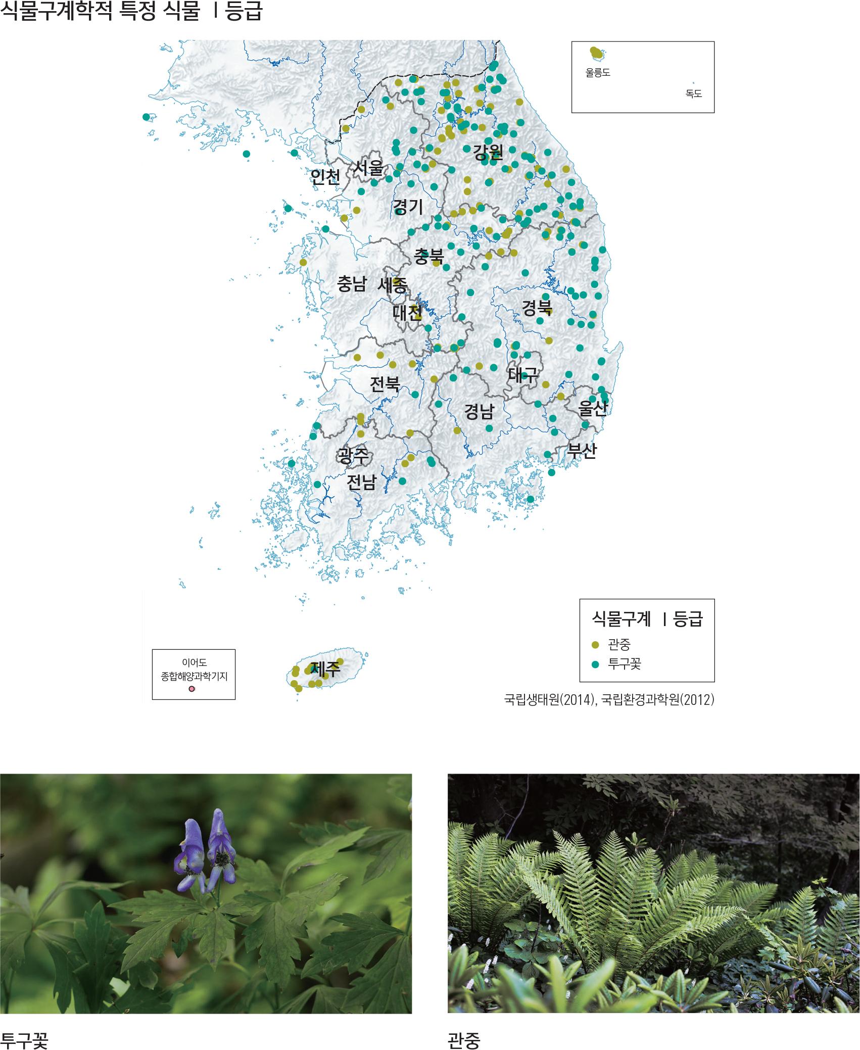 식물구계학적 특정 식물 I등급