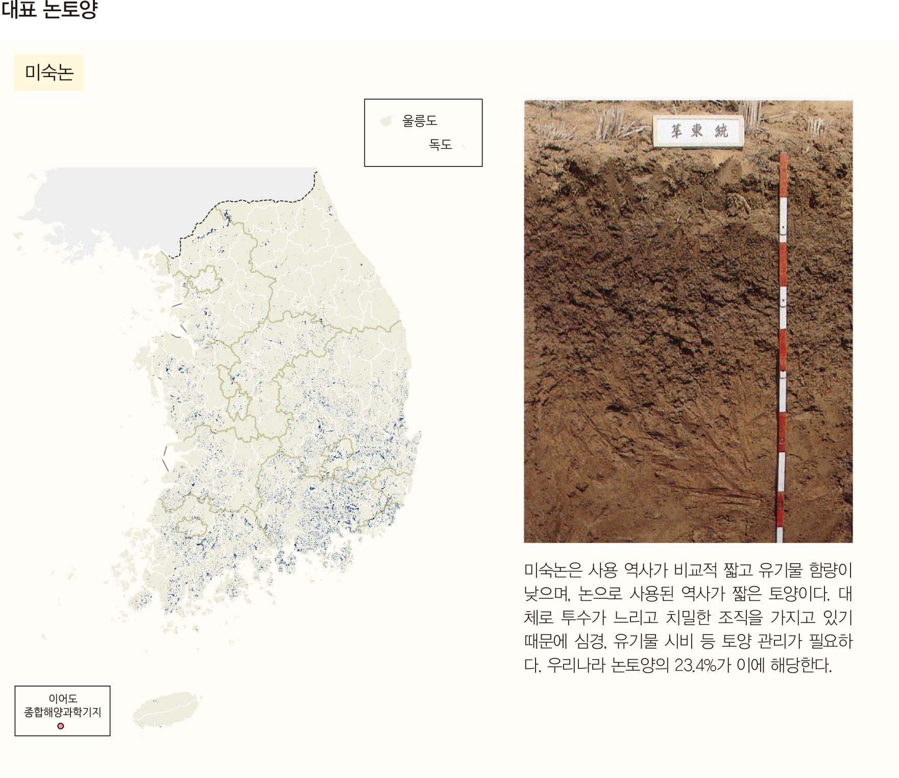 대표 논토양 미숙논