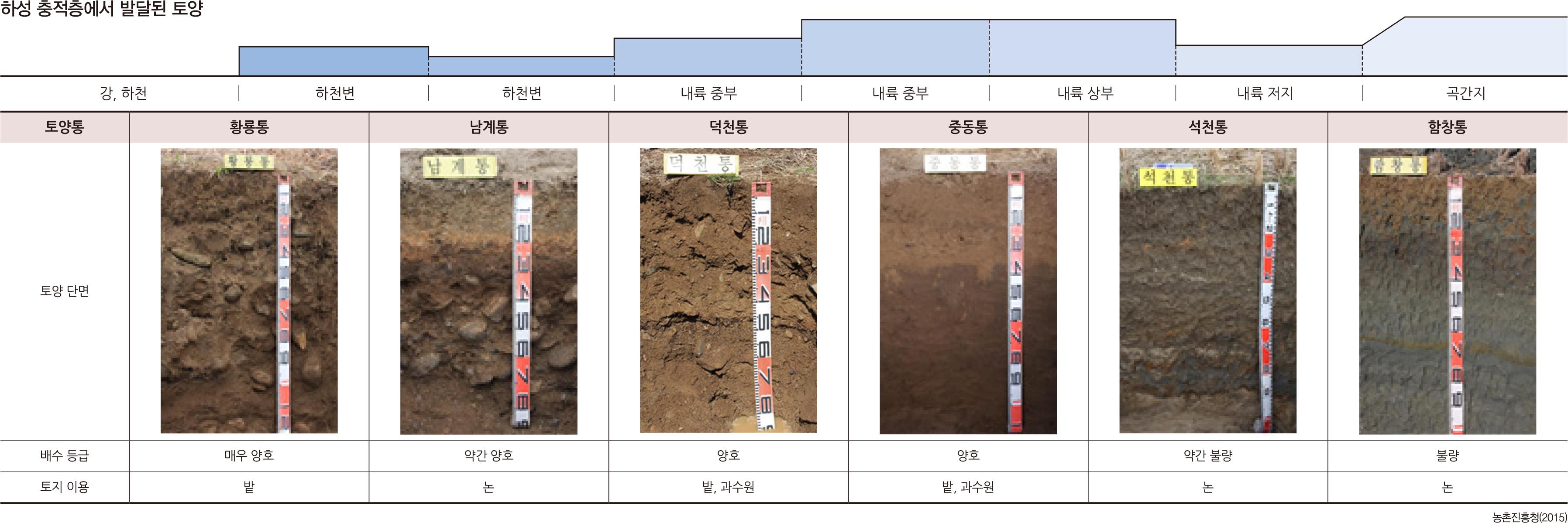 하성 충적층에서 발달된 토양