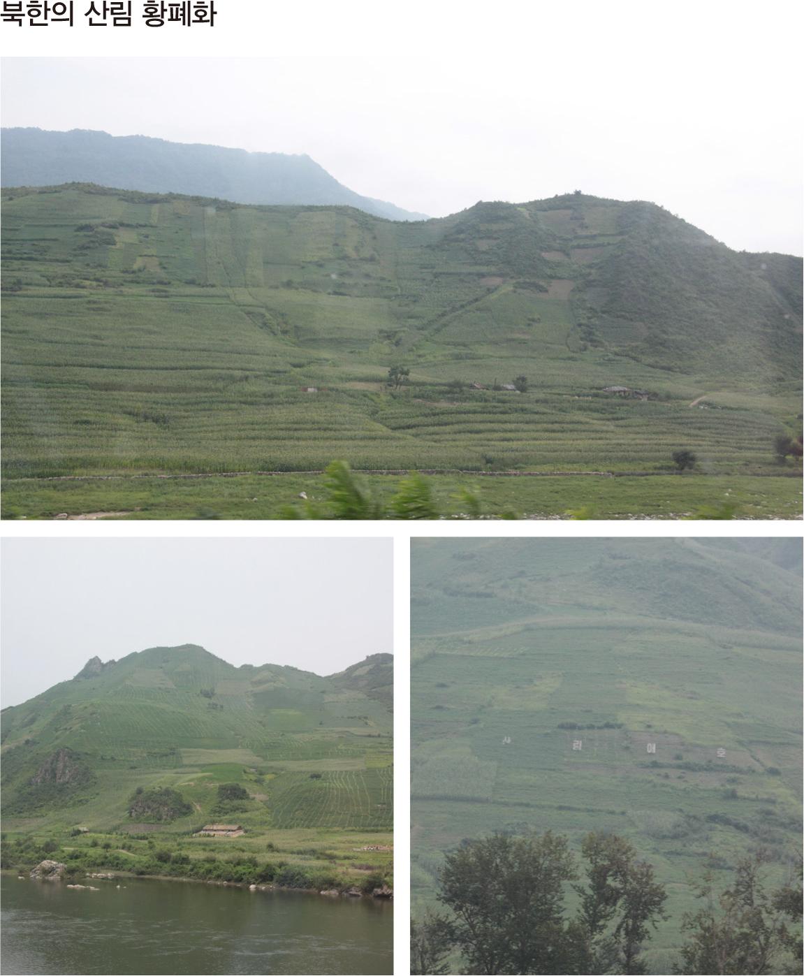 북한의 산림 황폐화