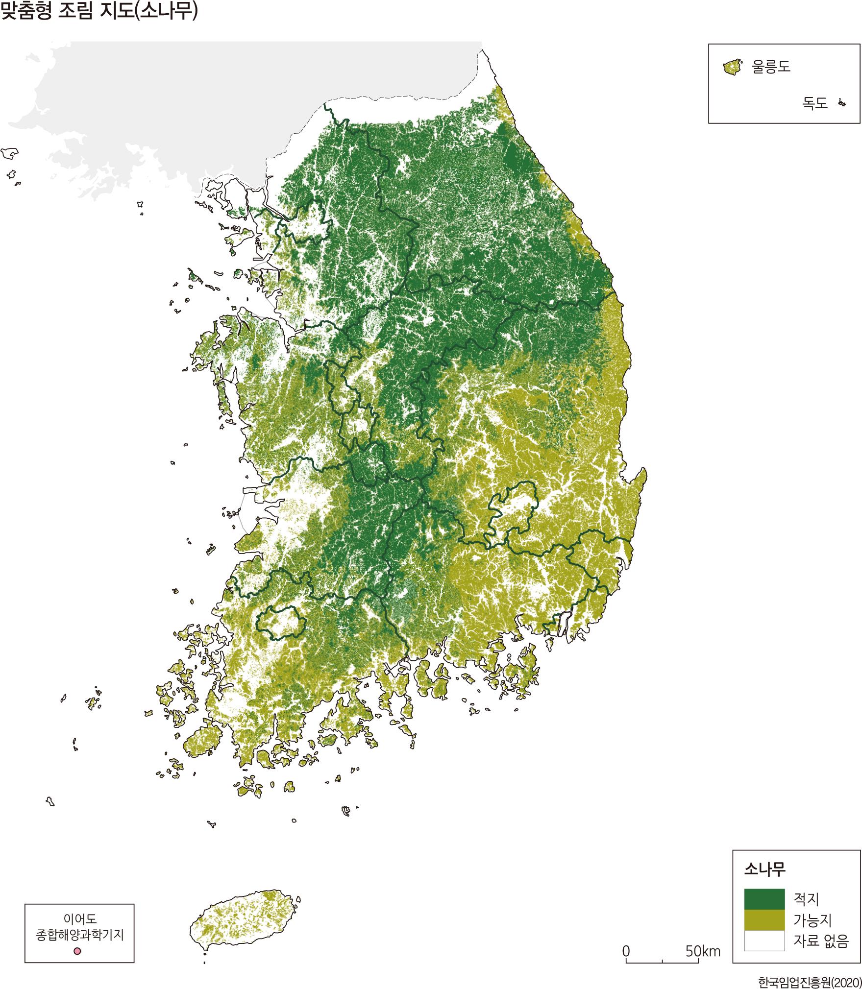 맞춤형 조림 지도(소나무)