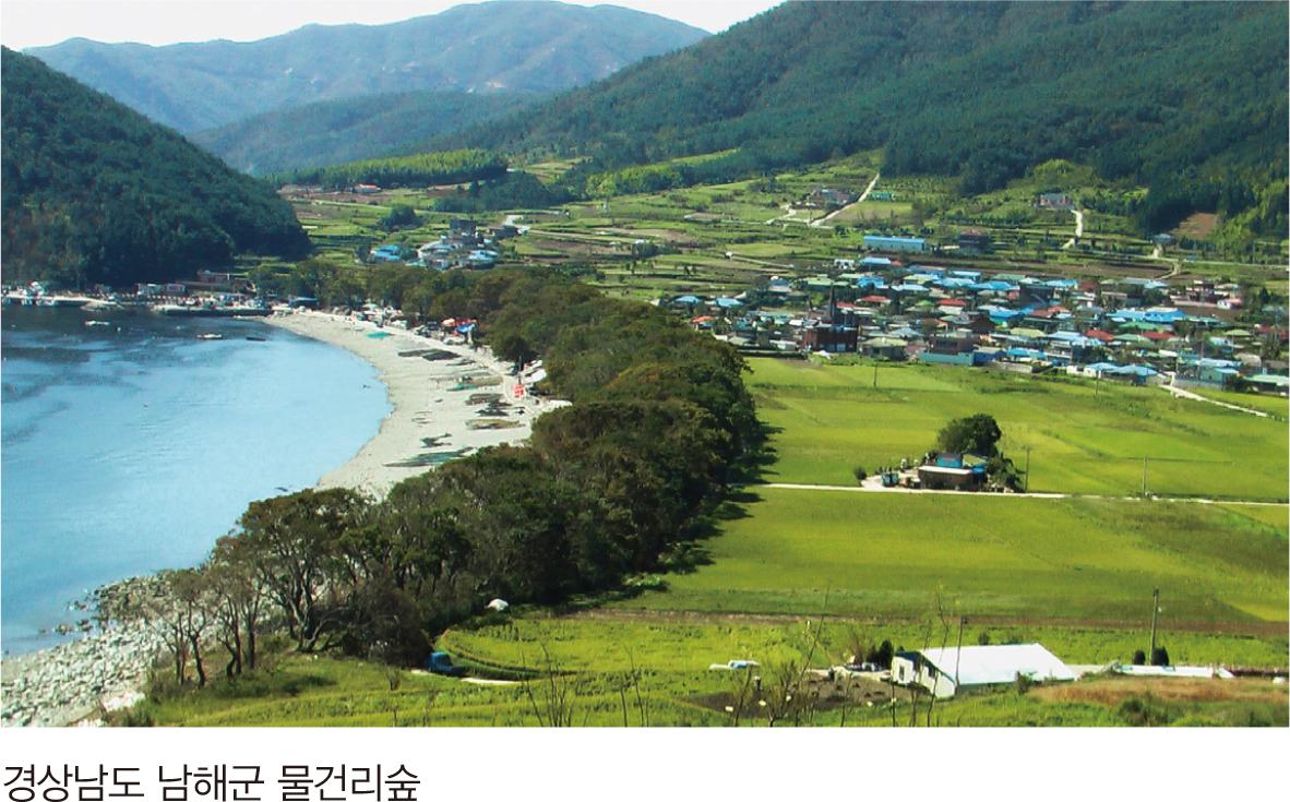 경상남도 남해군 물건리숲