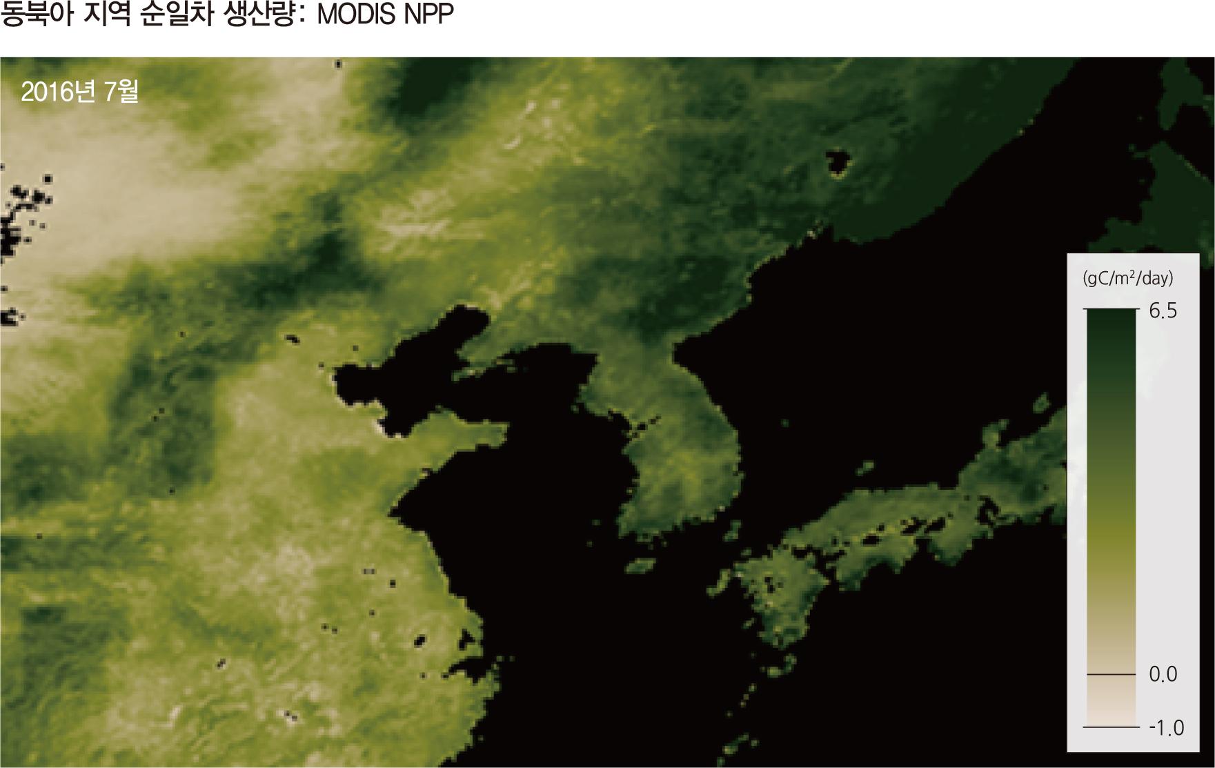 동북아 지역 순일차 생산량: MODIS NPP