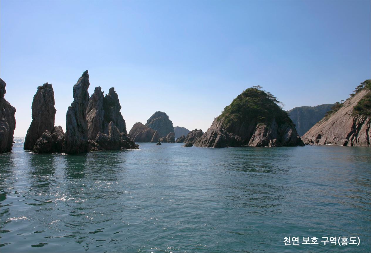 천연 보호 구역(홍도)